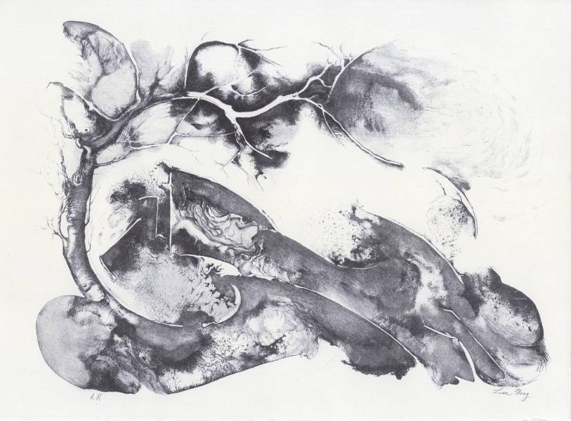 "Tree in Moonlight - 1983: 11""h x 15""w, stone lithograph."